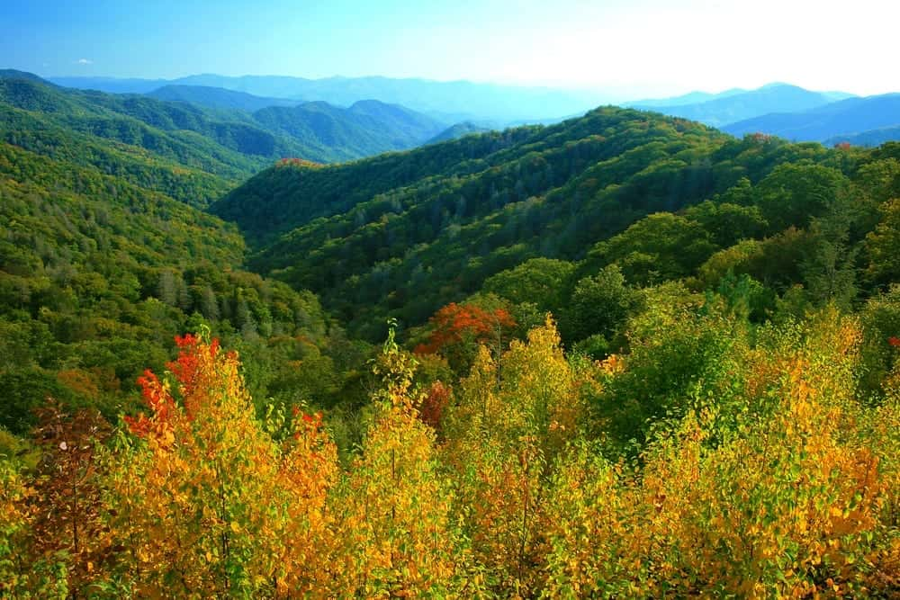 Fall colors in the Smoky Mountains.
